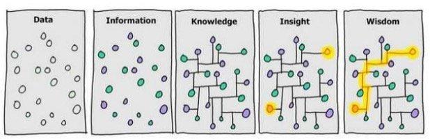 Building data-first organization